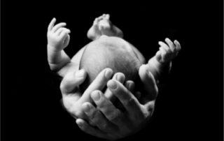 Geburten nicht unnötig beschleunigen - Foto © Kerstin Pukall