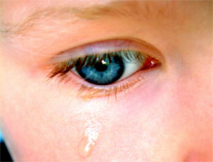 Krippenstart – Tränen und Stress - Foto iStock © pjjones